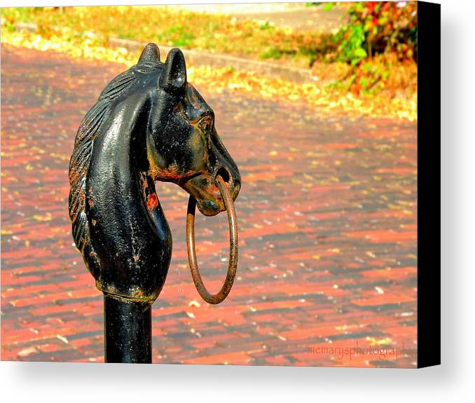Horse's Head Canvas Print featuring the photograph Hitching Post by Mary Williamson
