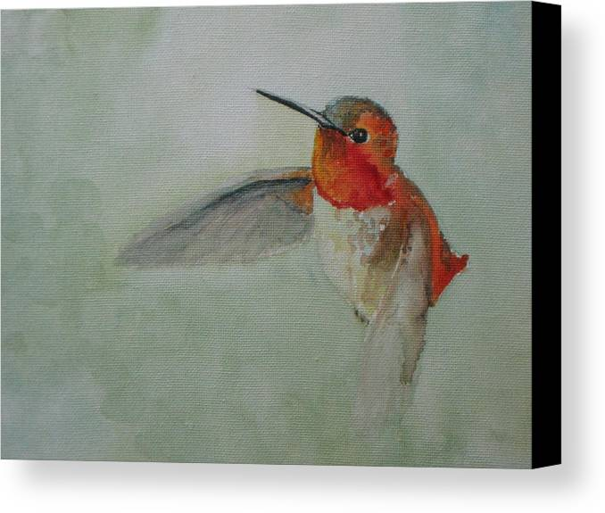 Hummingbirds Canvas Print featuring the painting Hummingbird 2 by Emy Higgins