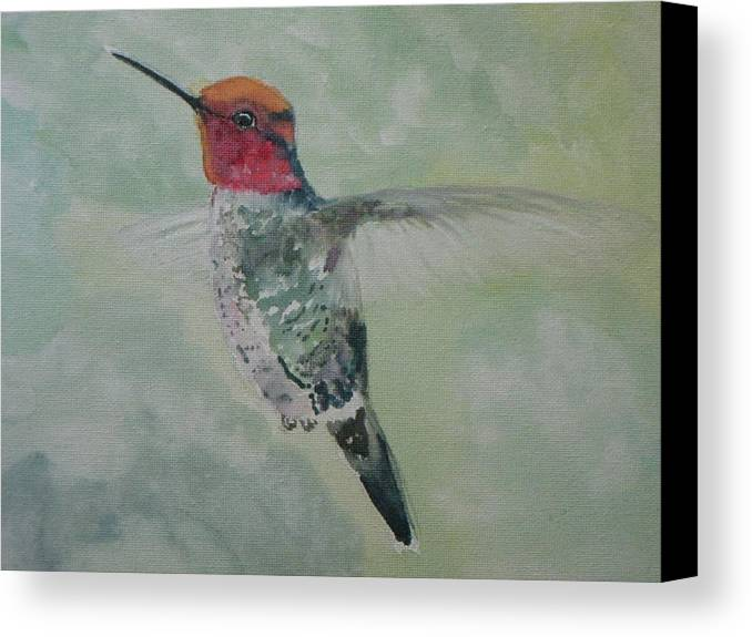 Nature Canvas Print featuring the painting Hummingbird 3 by Emy Higgins