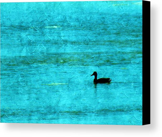 Ice Canvas Print featuring the photograph Icy Swim by Annie Adkins
