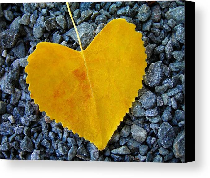 Love Canvas Print featuring the photograph In Love ... by Juergen Weiss
