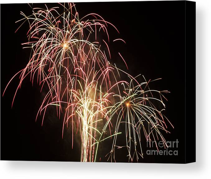 Fireworks Canvas Print featuring the photograph Independence Day Fireworks by Philip Pound