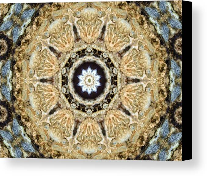 Abstract Canvas Print featuring the photograph Inside The Dream by Tom Druin
