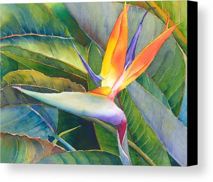 Bird Of Paradise Canvas Print featuring the painting Its A Bird by Judy Mercer