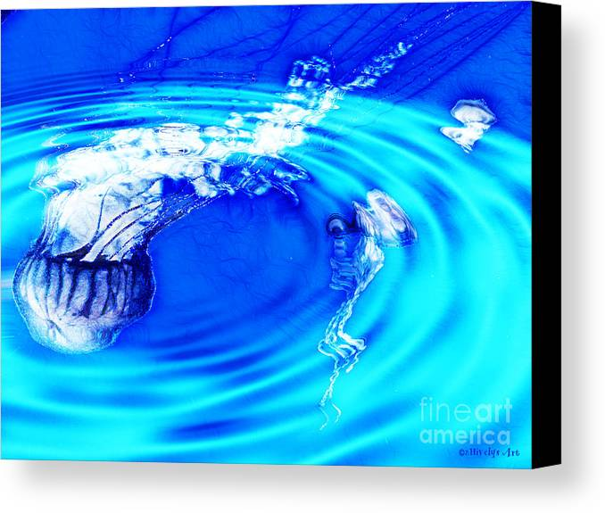 Jellyfish Pool Canvas Print featuring the photograph Jellyfish Pool by Methune Hively