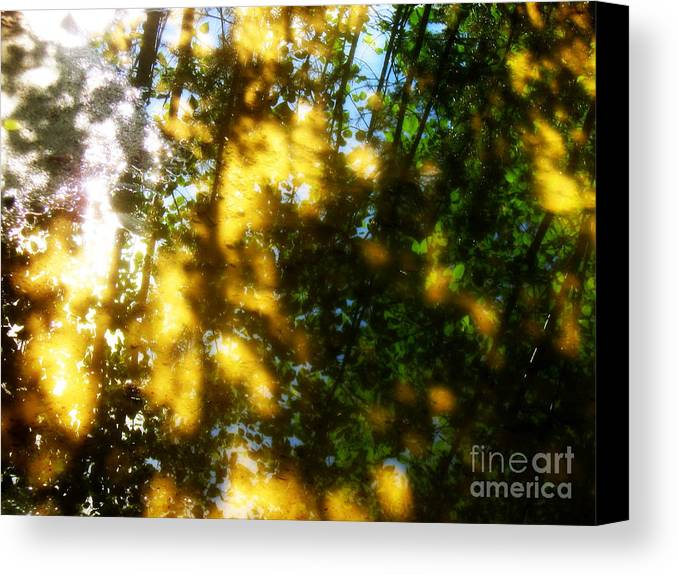 Forest Canvas Prints Canvas Print featuring the photograph Light Messengers by Pauli Hyvonen