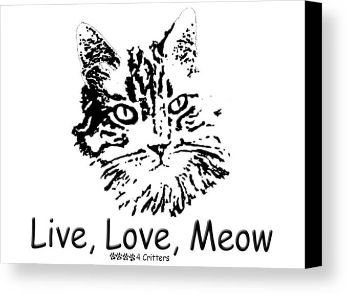 Live Love Meow Canvas Print featuring the photograph Live Love Meow by Robyn Stacey