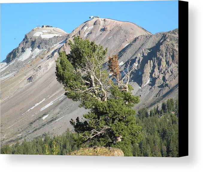 Mountains Canvas Print featuring the photograph Mammoth Mountain by Peter Hennessey