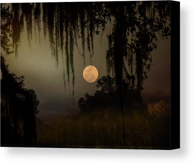 Canvas Print featuring the photograph Moon Mists by John Stokes