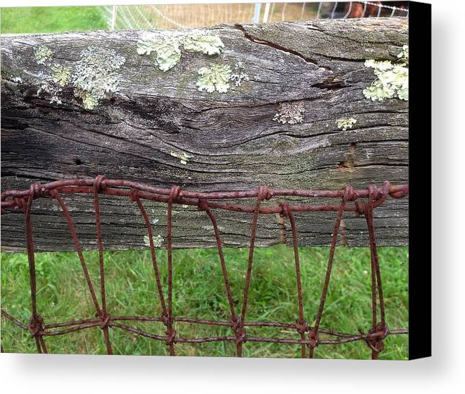 Wire Canvas Print featuring the photograph Old Fence by Richard Lent