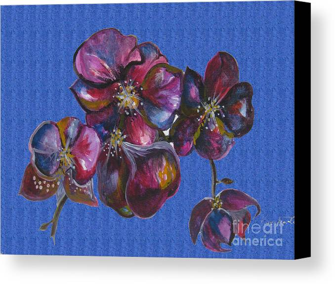 Watercolour Canvas Print featuring the drawing Orchids Blue by Karen Larter
