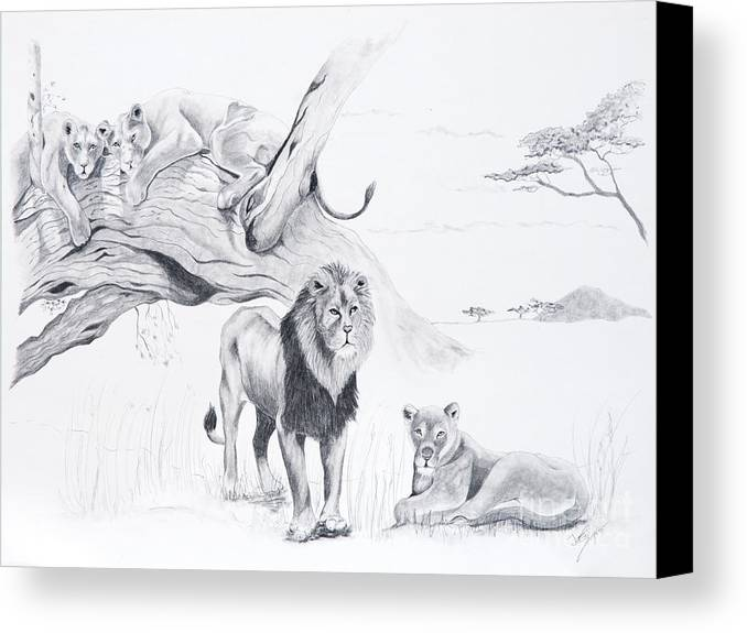 Lion Canvas Print featuring the drawing Peaceful Pride by Joette Snyder