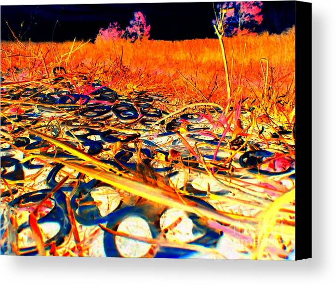 Abstract Canvas Print featuring the photograph Pop Art B06 by Rrrose Pix