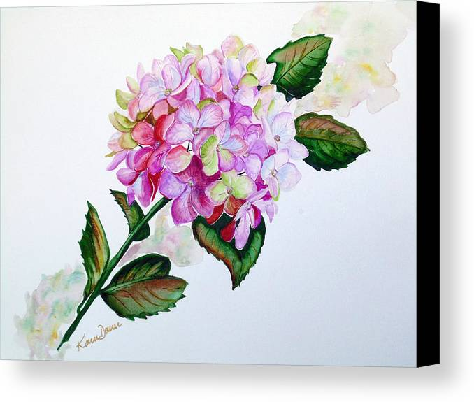 Hydrangea Painting Floral Painting Flower Pink Hydrangea Painting Botanical Painting Flower Painting Botanical Painting Greeting Card Painting Painting Canvas Print featuring the painting Pretty In Pink by Karin Dawn Kelshall- Best