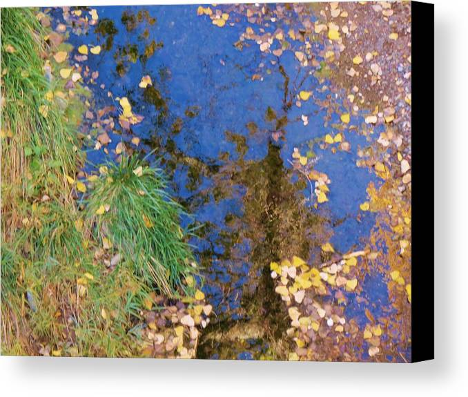 Fall Canvas Print featuring the photograph Reflections Of Fall by Feva Fotos