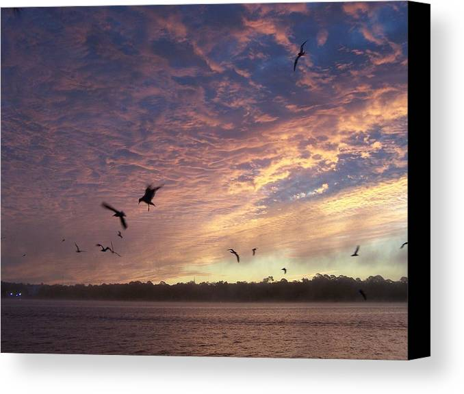 Sunrise Canvas Print featuring the photograph Rejoicing by Michele Kaiser