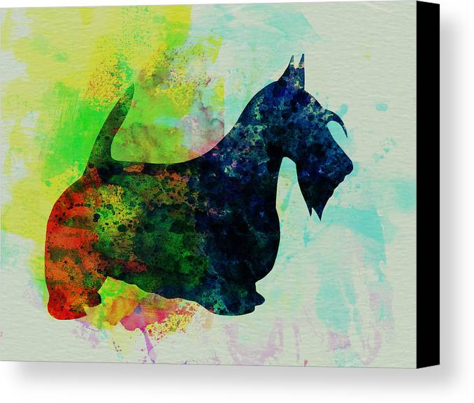 Scottish Terrier Canvas Print featuring the painting Scottish Terrier Watercolor by Naxart Studio