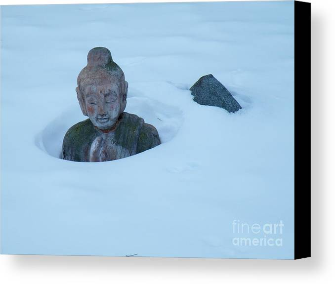 Solar Canvas Print featuring the photograph Solar Powered Dharmic Snow Remover by Brian Boyle
