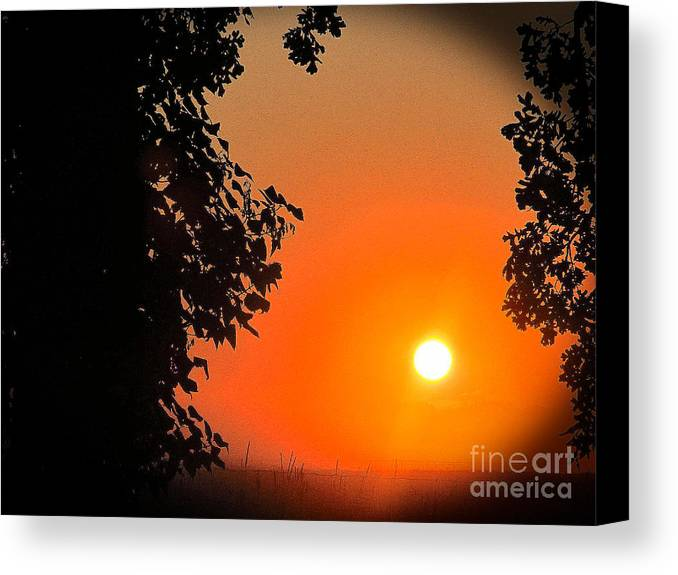 Sun Canvas Print featuring the photograph Sunset 365 18 by Tina M Wenger