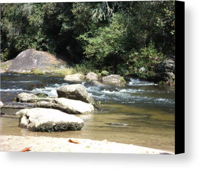 Nature Canvas Print featuring the photograph The Crossing by Thad Burns