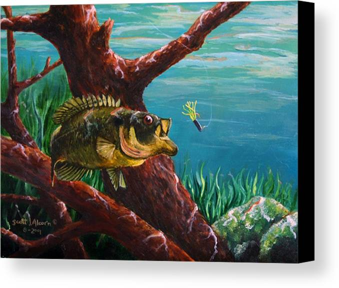 Fish Canvas Print featuring the painting The Hit   Warmouth by Scott Alcorn