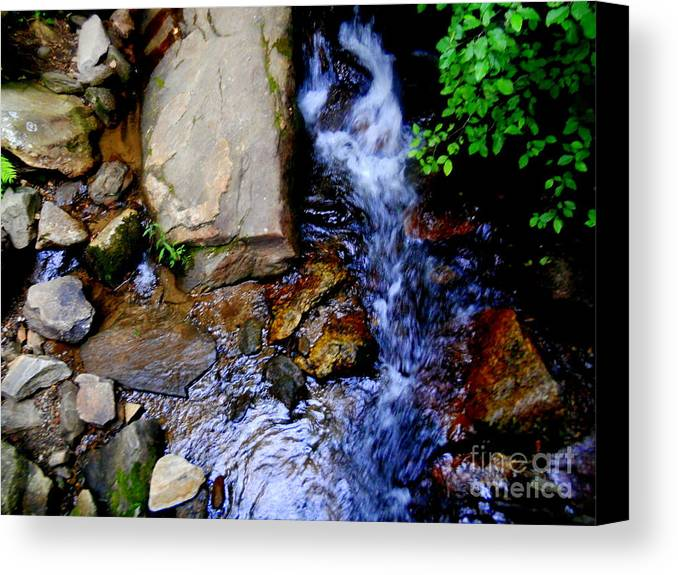 Land Canvas Print featuring the photograph The Middle Of Nowhere by Patricia Bunk