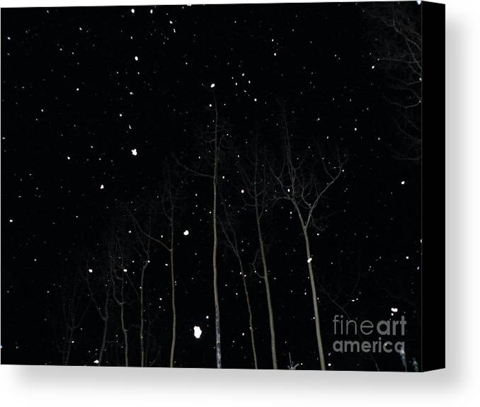 Park Canvas Print featuring the photograph The Park In Winter by Brian Boyle
