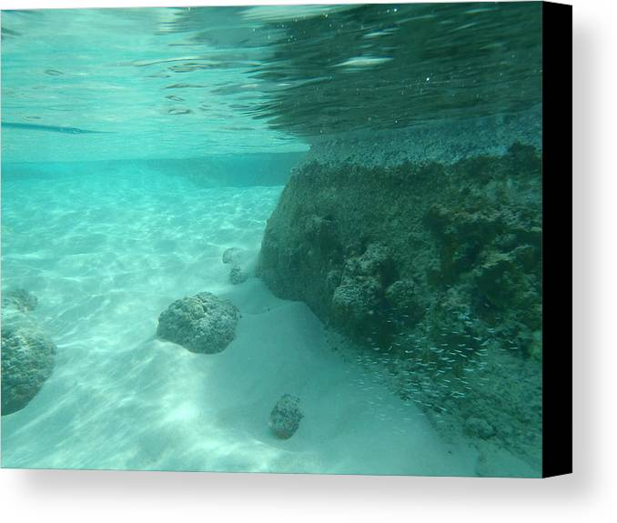 Underwater Tropical Island Photography Canvas Print featuring the photograph Underwater Tropical Island Photography by