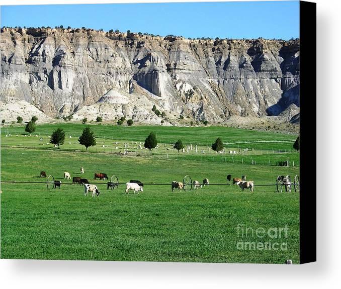 Usa Canvas Print featuring the photograph Utah Farm Cows by Ted Pollard