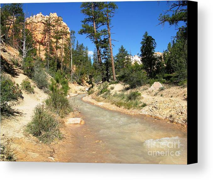 Usa Canvas Print featuring the photograph Utah Stream by Ted Pollard
