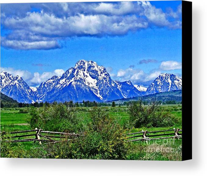 Landscape Canvas Print featuring the photograph Why Roaming by Arby Mulligan