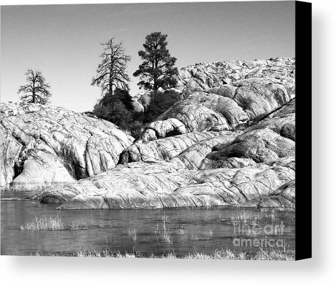 Willow Lake Canvas Print featuring the photograph Willow Lake Number One Bw by Heather Kirk