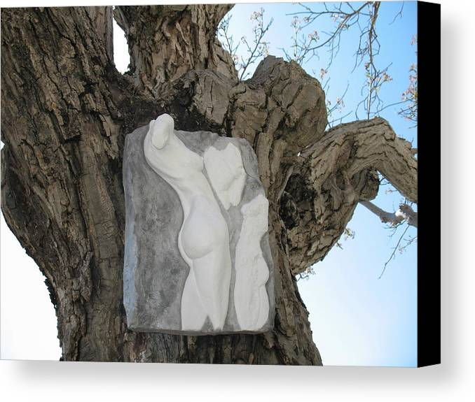 Nude Woman Torso Sculpture Canvas Print featuring the relief Woman Torso - Cast 1 by Flow Fitzgerald