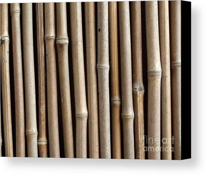 Bamboo Canvas Print featuring the photograph Bamboo Fence by Yali Shi