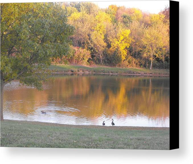 Lake Canvas Print featuring the photograph Reflections by Michelle Jacobs-anderson