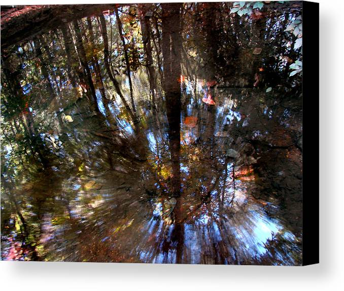 Pond Canvas Print featuring the photograph Anomaly by Tammy Cantrell