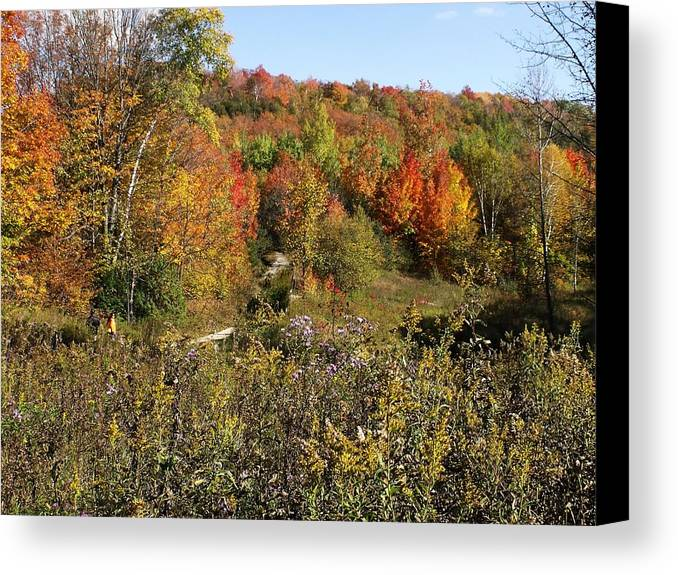 Photograph Canvas Print featuring the photograph Canada Colors by Dottie Gillespie