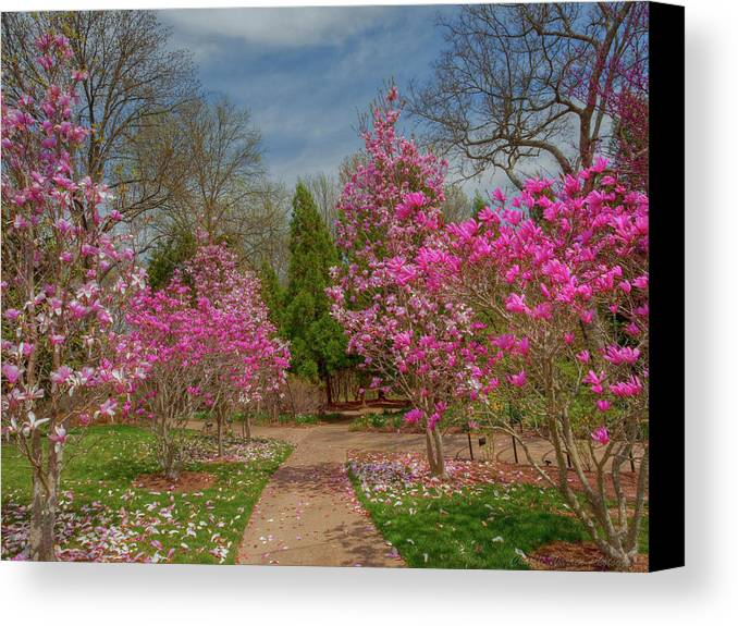 Cheekwood Gardens Canvas Print featuring the photograph Cheekwood Gardens by Charles Warren