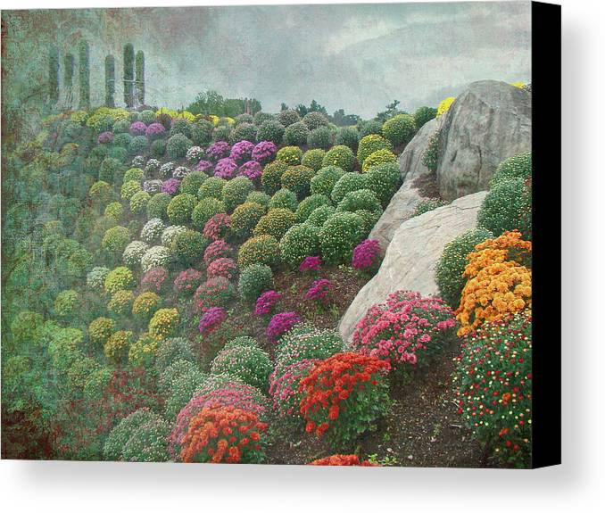 Chrysanthemum Canvas Print featuring the photograph Chrysanthemum Garden - Ott's Greenhouse Schwenksville Pa by Mother Nature