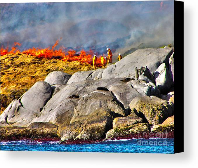 Fire Canvas Print featuring the photograph Elements by Joanne Kocwin