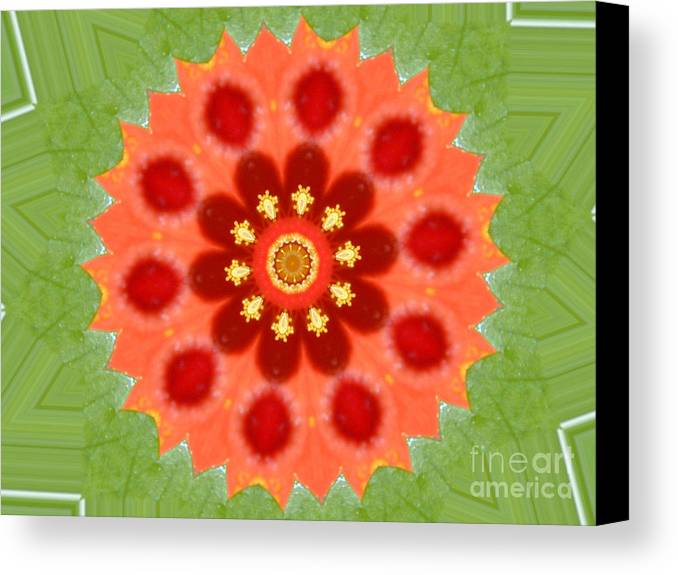 Digital Design Canvas Print featuring the photograph Hibiscus by Mark Gilman