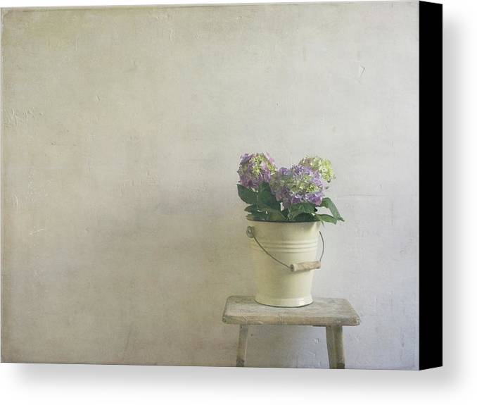 Horizontal Canvas Print featuring the photograph Hydrangea Resting On A Stool by Paul Grand Image