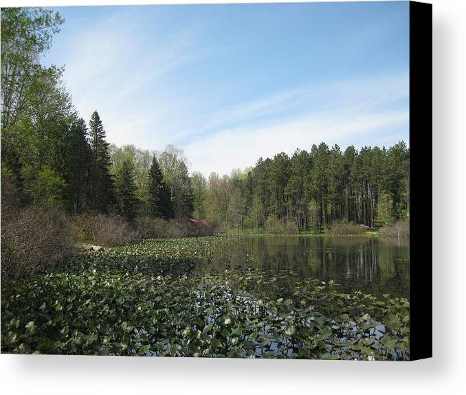 Lake Canvas Print featuring the photograph Lake View by S K