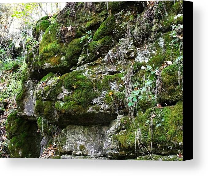 Moss Canvas Print featuring the photograph Moss N Rock by Dottie Gillespie