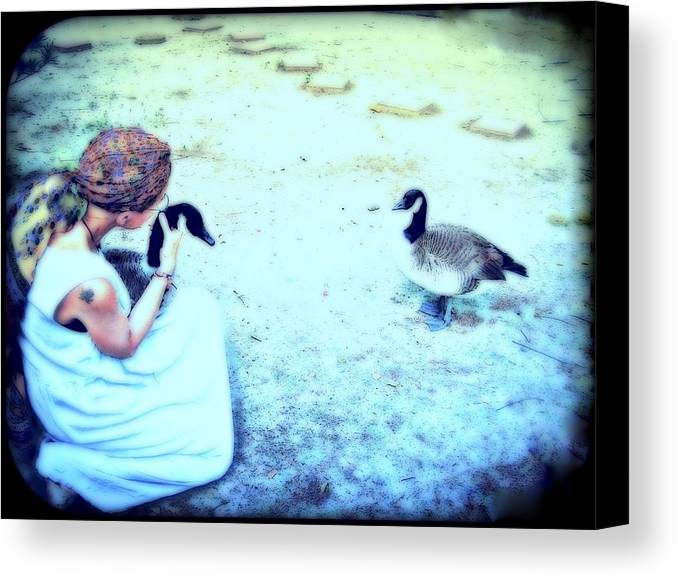 Canada Geese Canvas Print featuring the mixed media Mother And Geese by YoMamaBird Rhonda