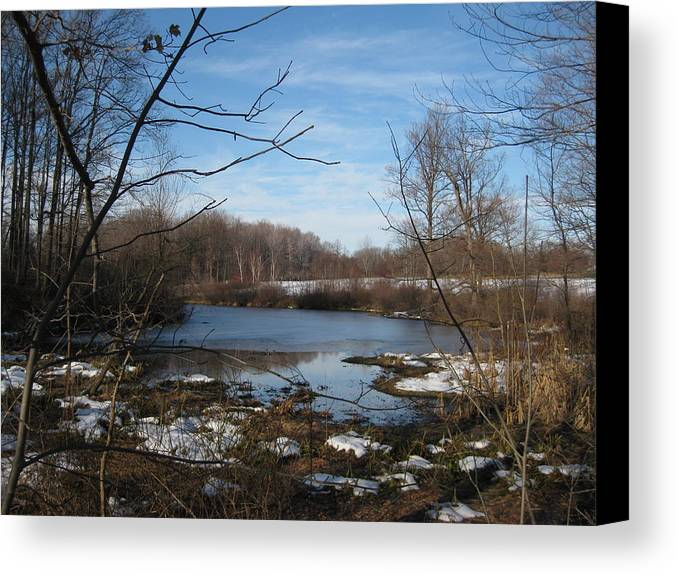 Lake Canvas Print featuring the photograph November At The Lake by S K