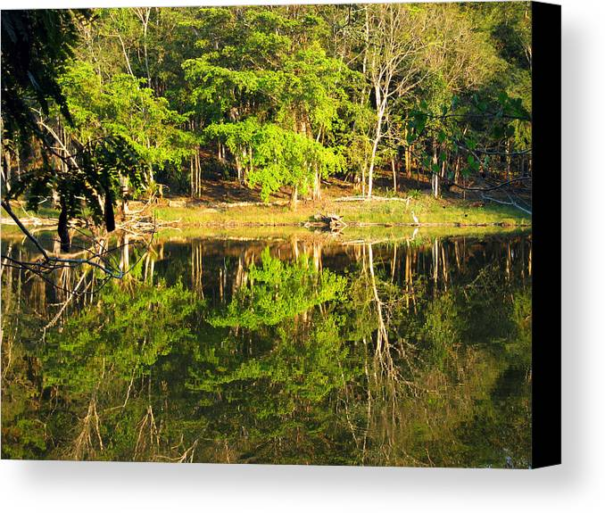 Pond Canvas Print featuring the photograph Pond Reflection Guatemala by Kurt Van Wagner