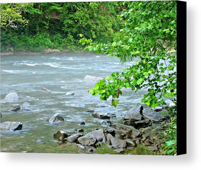 Raging Canvas Print featuring the photograph Raging River by David Brown