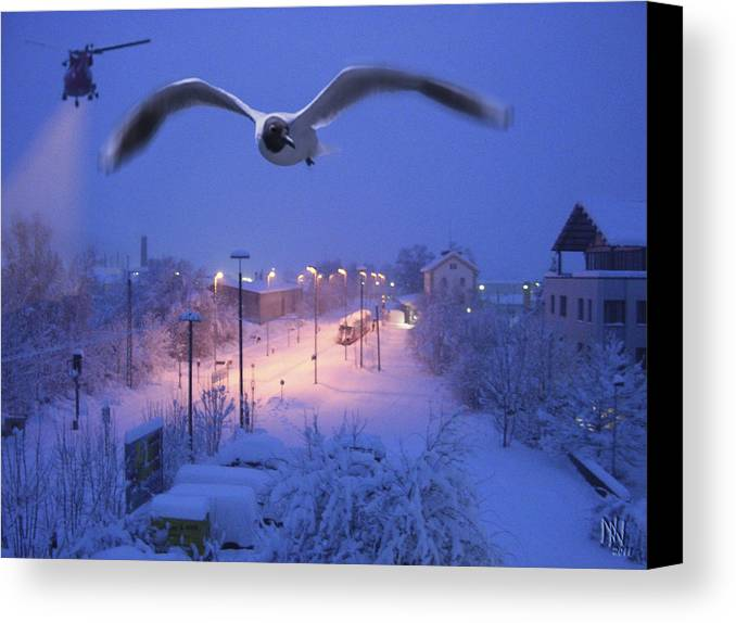 Seagull Canvas Print featuring the digital art Seagull At Winter by Nafets Nuarb