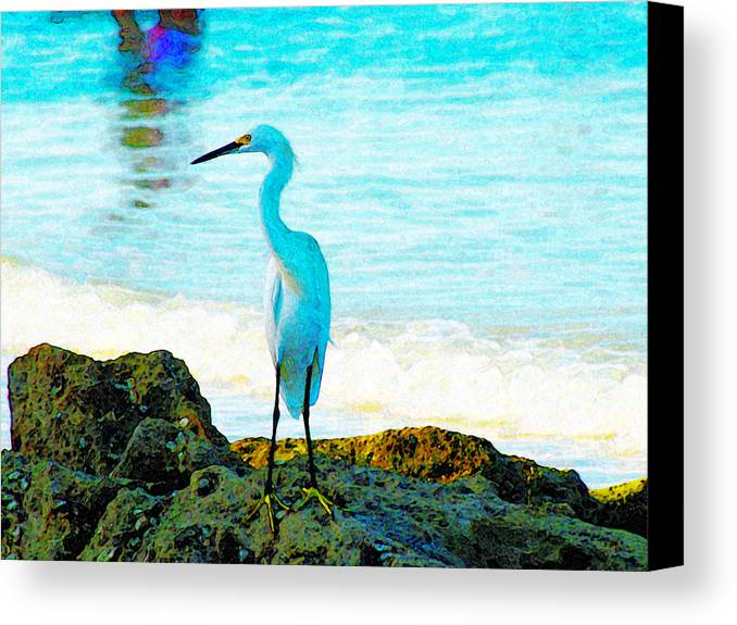 Expressive Canvas Print featuring the photograph Sharon's Gift by Lenore Senior